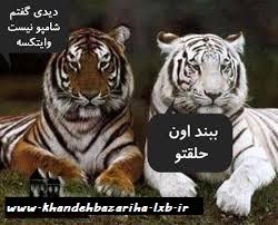 پست های فیسبوکیwww.khandehbazariha.lxb.ir